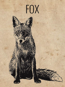 game-fox