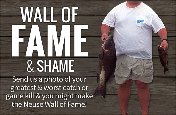 wall-of-fame-tips