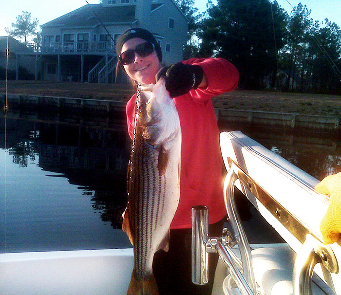 Tina Herrington catches a fame-worthy Striper in the New Bern area